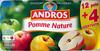 Dessert Fruitier® Pomme Nature (12 pots + 4 Gratuits) 1,6 kg - Andros - Produto