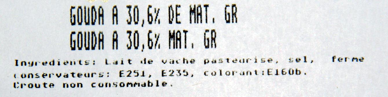 Gouda (30,6 % MG) - Ingrédients - fr