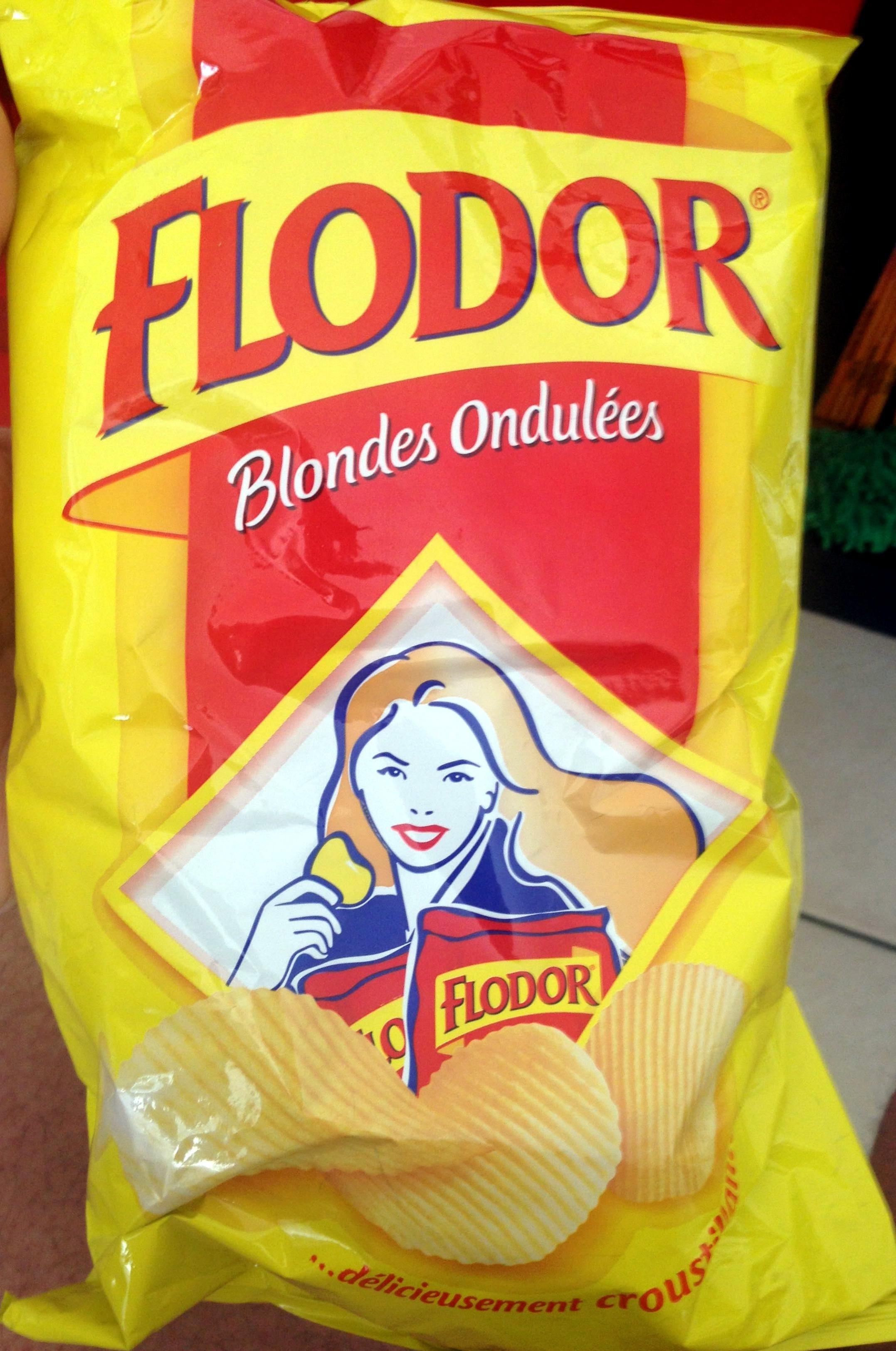 """Résultat de recherche d'images pour """"frites flodor"""""""