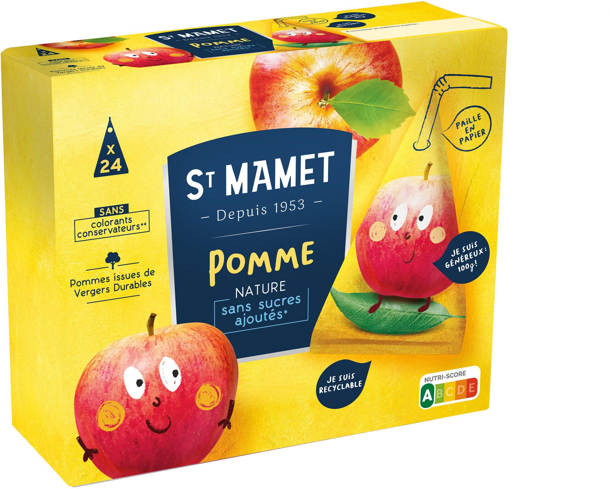 Berlingot pomme sans sucres ajoutés - Product - fr