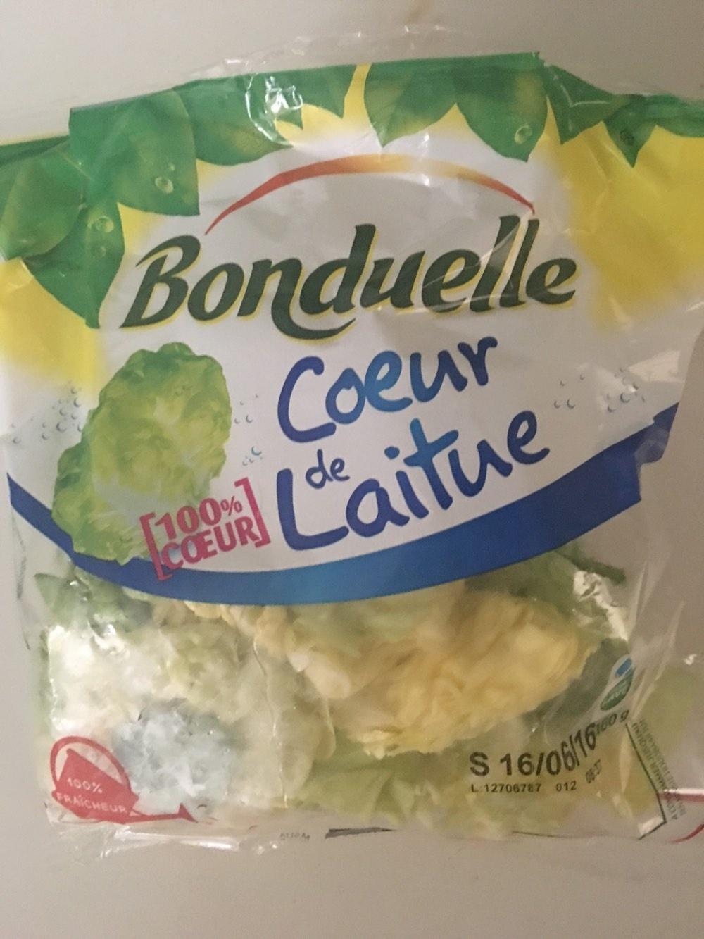 Coeur de laitue Feuilles délicates et croquantes - Product - fr