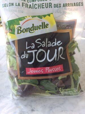 La Salade du Jour Jeunes Pousses - 3