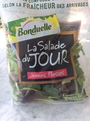 La Salade du Jour Jeunes Pousses - Produit - fr