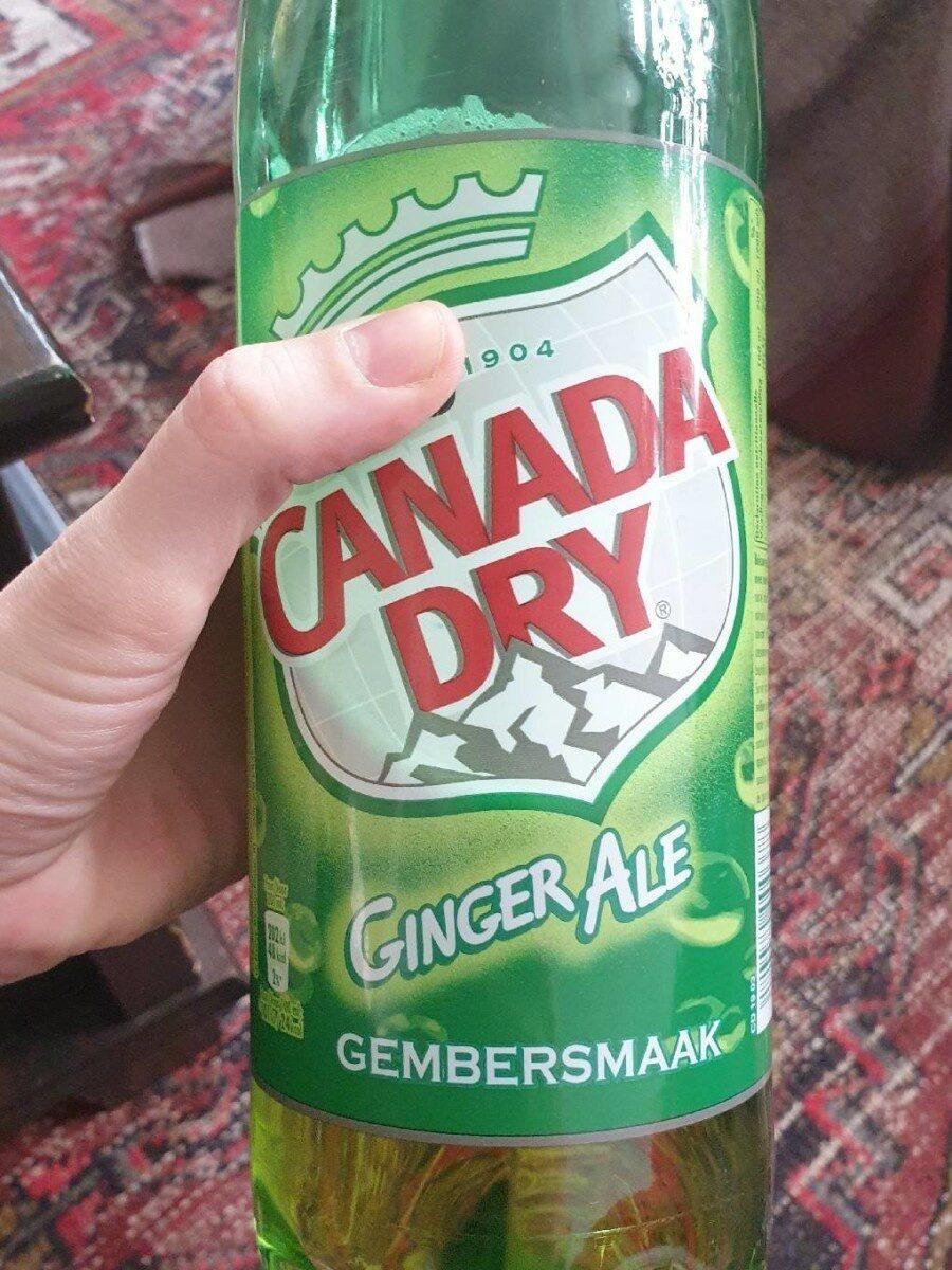 Ginger ale - Prodotto - fr