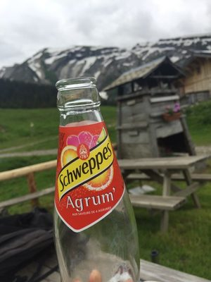 Swcheppes Agrum' - Product