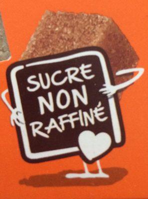 Petits Sucres Morceaux Pur Canne - Ingredients - fr