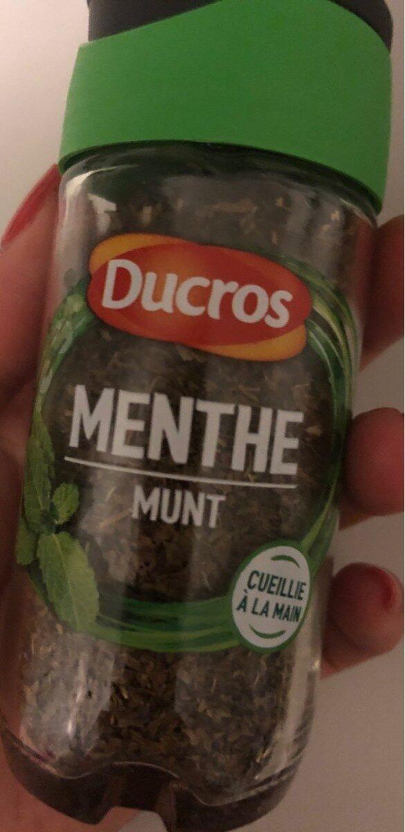 9G Menthe Ducros - Produit - fr
