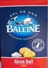 Gros sel iodé La Baleine - Produit