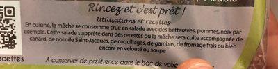 Mache - Ingrédients - fr