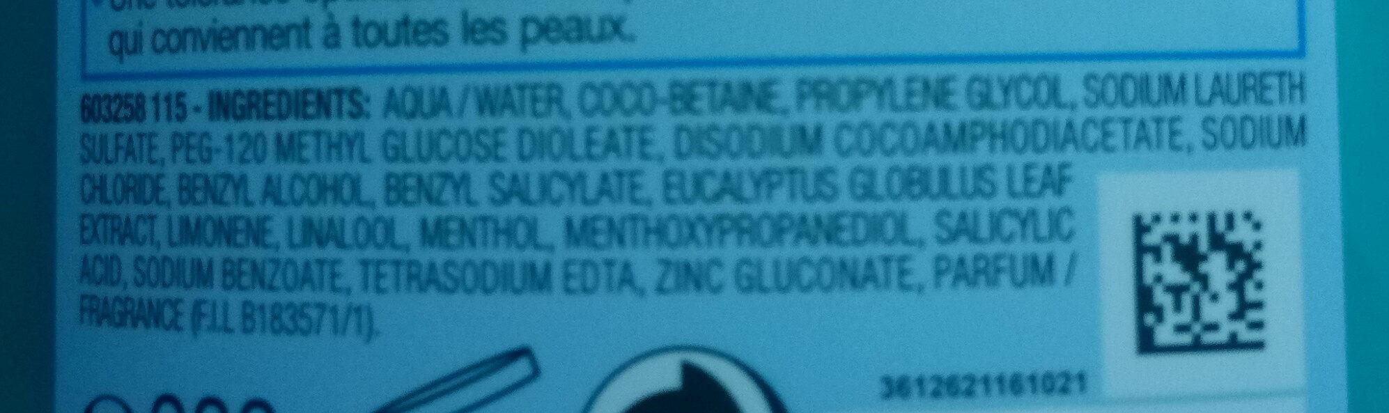 Pure Active Gel Nettoyant Purifiant - Ingredients