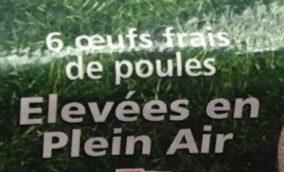 6 Oeufs frais de poules élevées en plein air - gros - Ingredients - fr