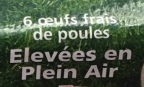 6 Oeufs frais de poules élevées en plein air - gros - Ingrédients - fr