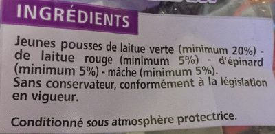 Jeunes pousses tendres - Ingrédients - fr