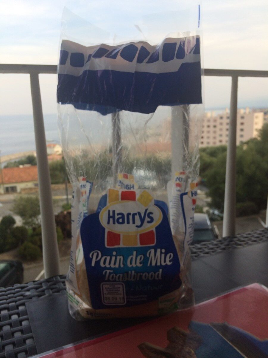 Pain American Sandwich nature - Producto - fr