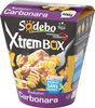 XtremBox - Radiatori Carbonara - Product