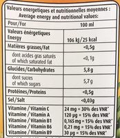 Nectar de 13 fruits - Informations nutritionnelles - fr
