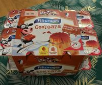 , Dessert Cool'Cara vanille nappe caramel, les 12 pots de 100 g - Produit - fr