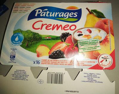 Créméo aux fruits (abricot, fraise, mûre, pêche, cerise, poire), yaourt au lait entier et à la crème sucré avec des fruits et aromatisé - Produit - fr