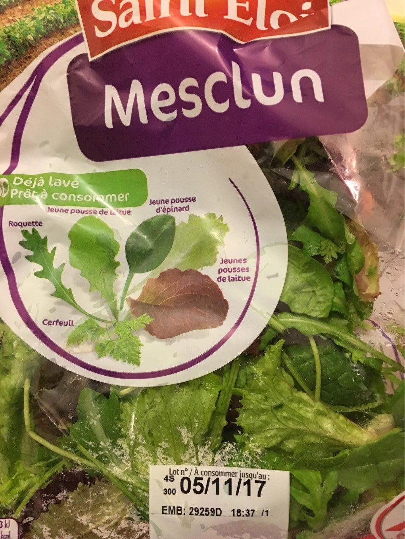 Mesclun - Produit - fr