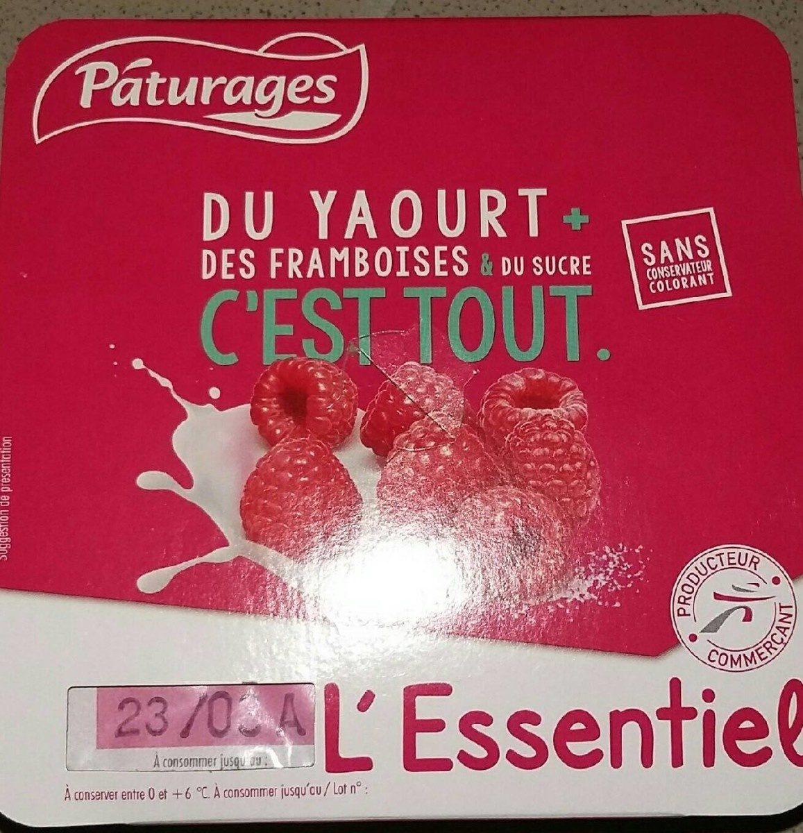 L'essentiel du yaourt + des framboise & du sucre c'est tout - Product