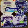 Frutimax Myrtille avec morceaux de fruits - Produit