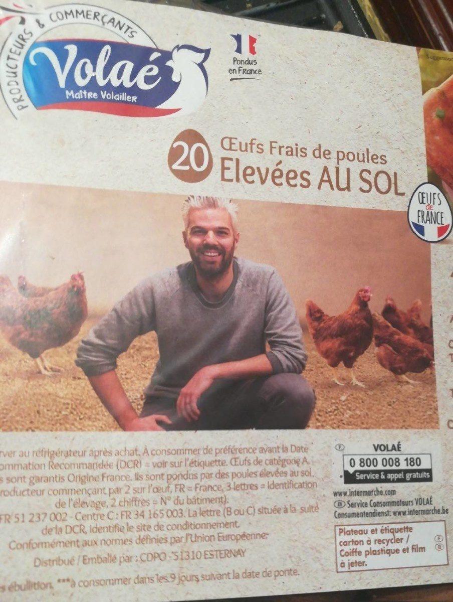 Oeuf Frais de poules Elevées AU SOL - Produit - fr