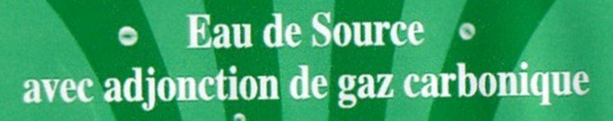 Eau de source gazéifiée - Ingrediënten