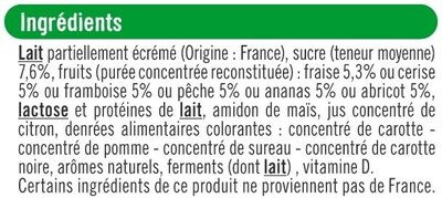 Yaourts brassés sucrés à la pulpe de fruits - Ingredients - fr