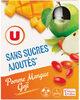 Gourdes pomme mangue goji sans sucre ajouté - Product