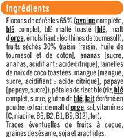Muesli tropical - Ingredients - fr