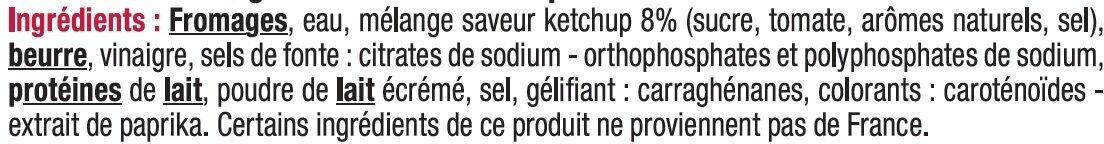 Tranches de fromage fondu_saveurs ketchup 19% de mg - Ingrédients - fr