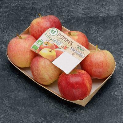 Pomme Gala, 6 fruits calibre 95/115 - Produit - fr
