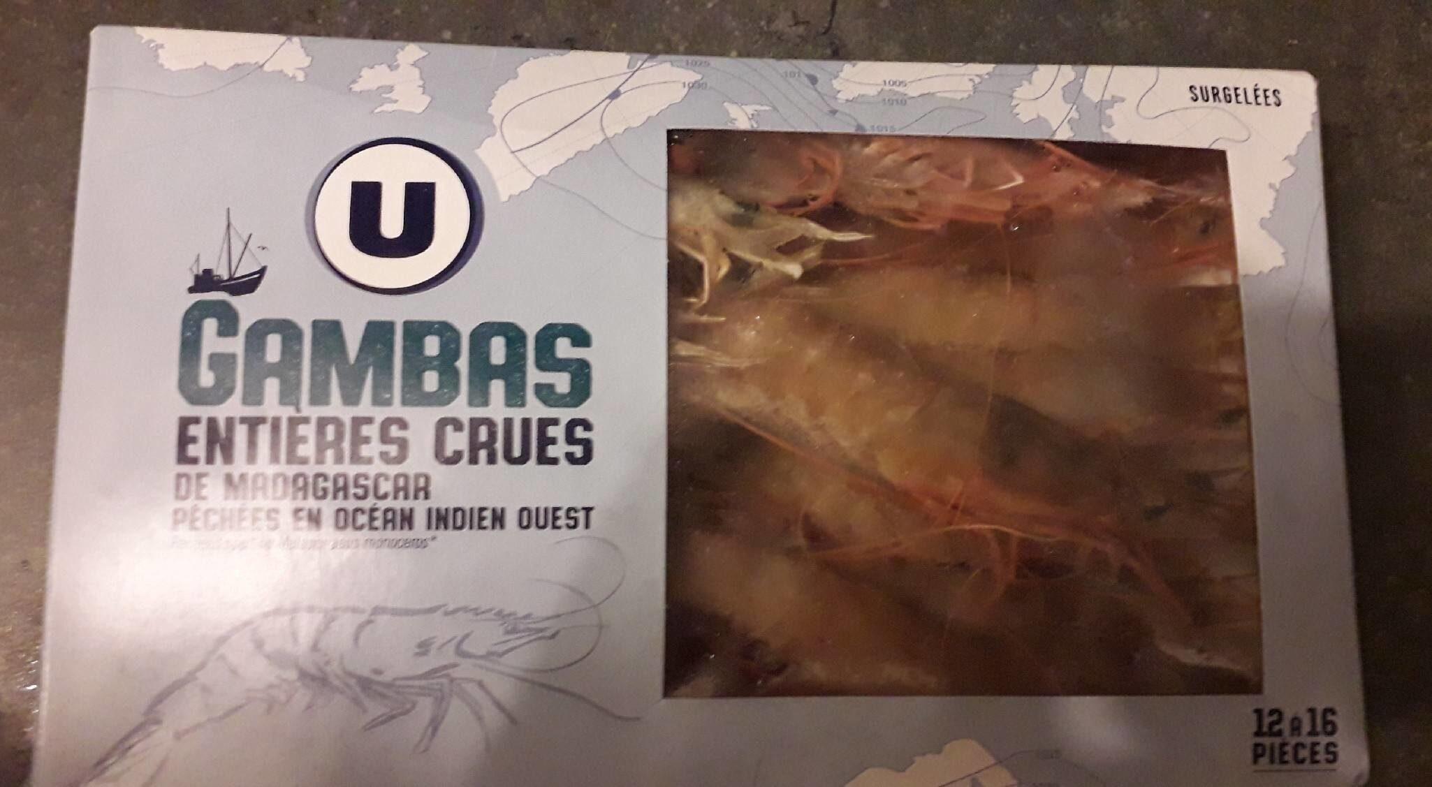 Gambas sauvages entières crues de Madagascar 12/16 - Product - fr