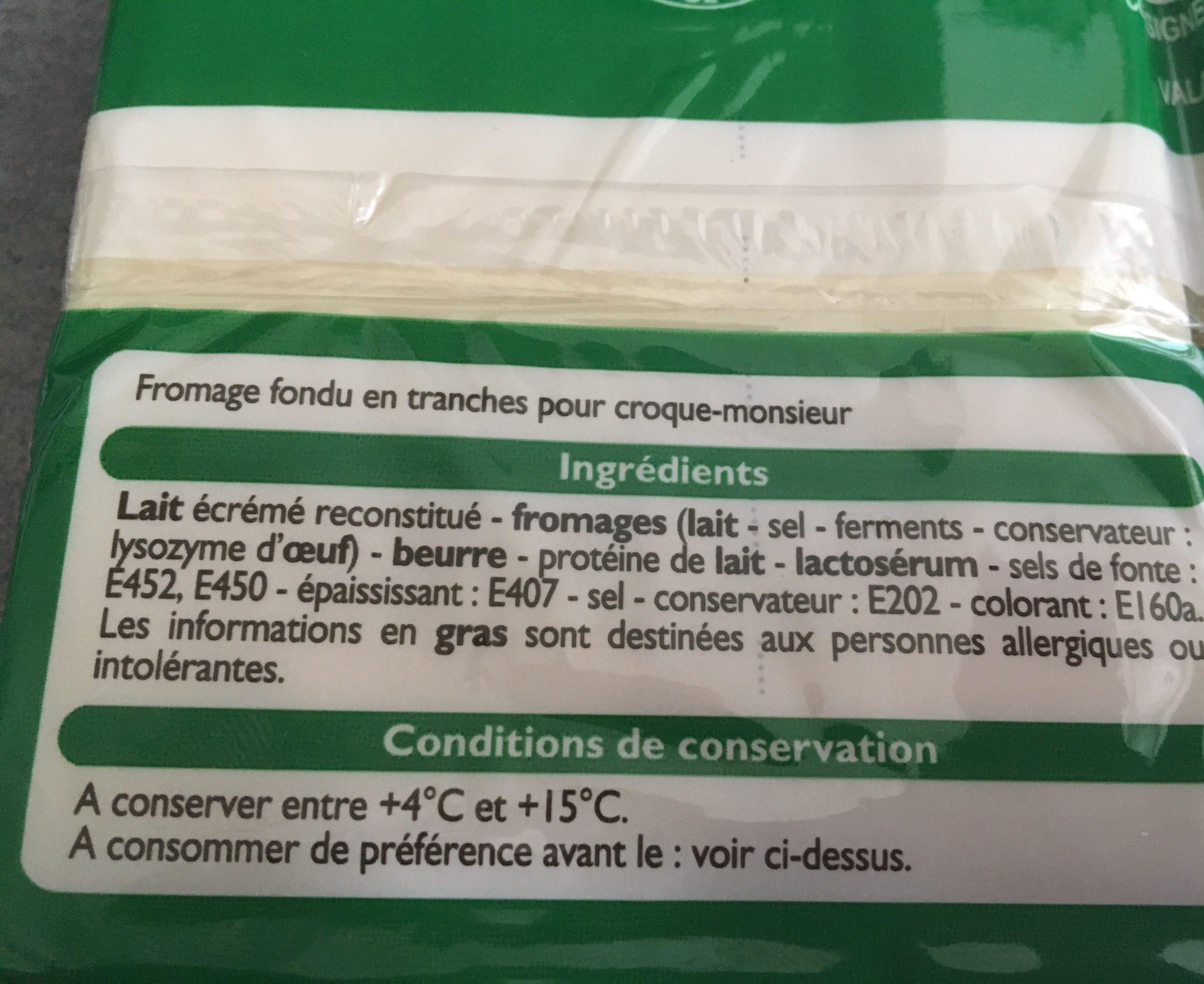 Fromage Fondu Spécial Croque Monsieur - Ingrédients - fr