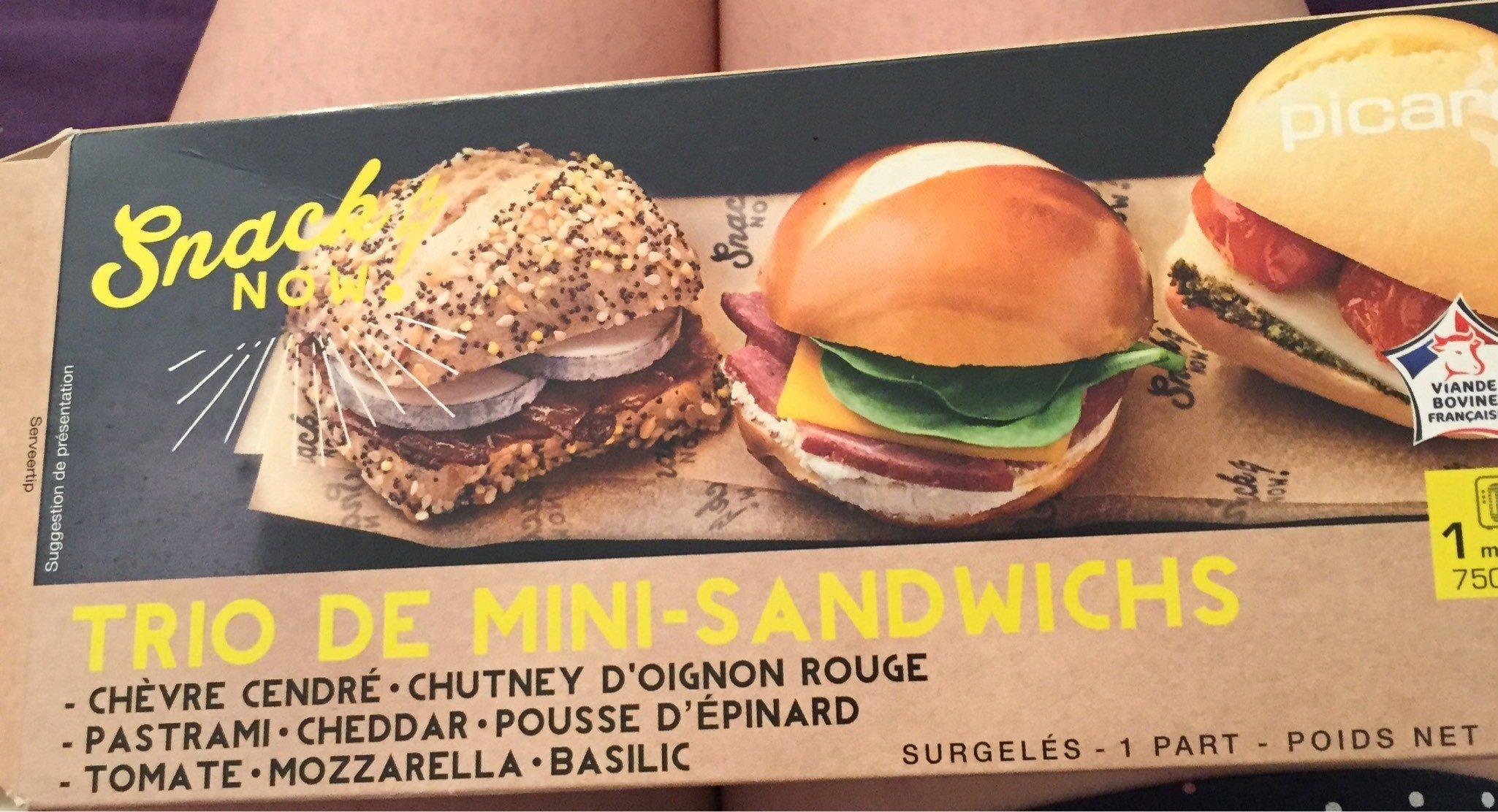 Trio de mini sandwichs - Product - fr