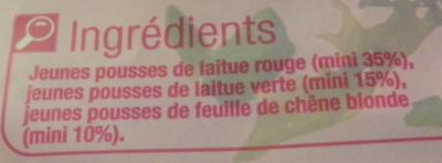 Salade prête à consommer, Jeunes Pousses (4 portions) - Ingredients - fr