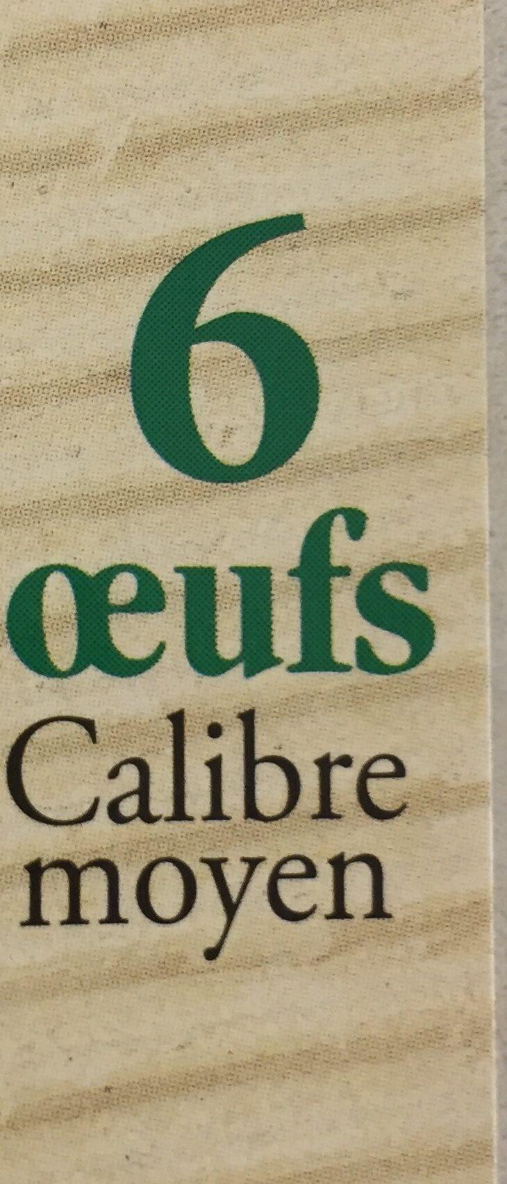 6 Oeufs bio moyen CORSOEUF - Ingredients - fr