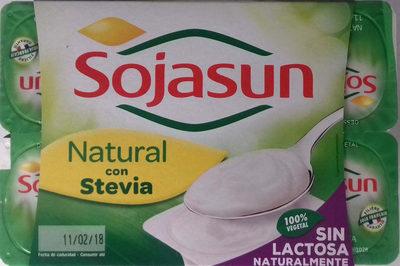Soja fermentada - Producto - es