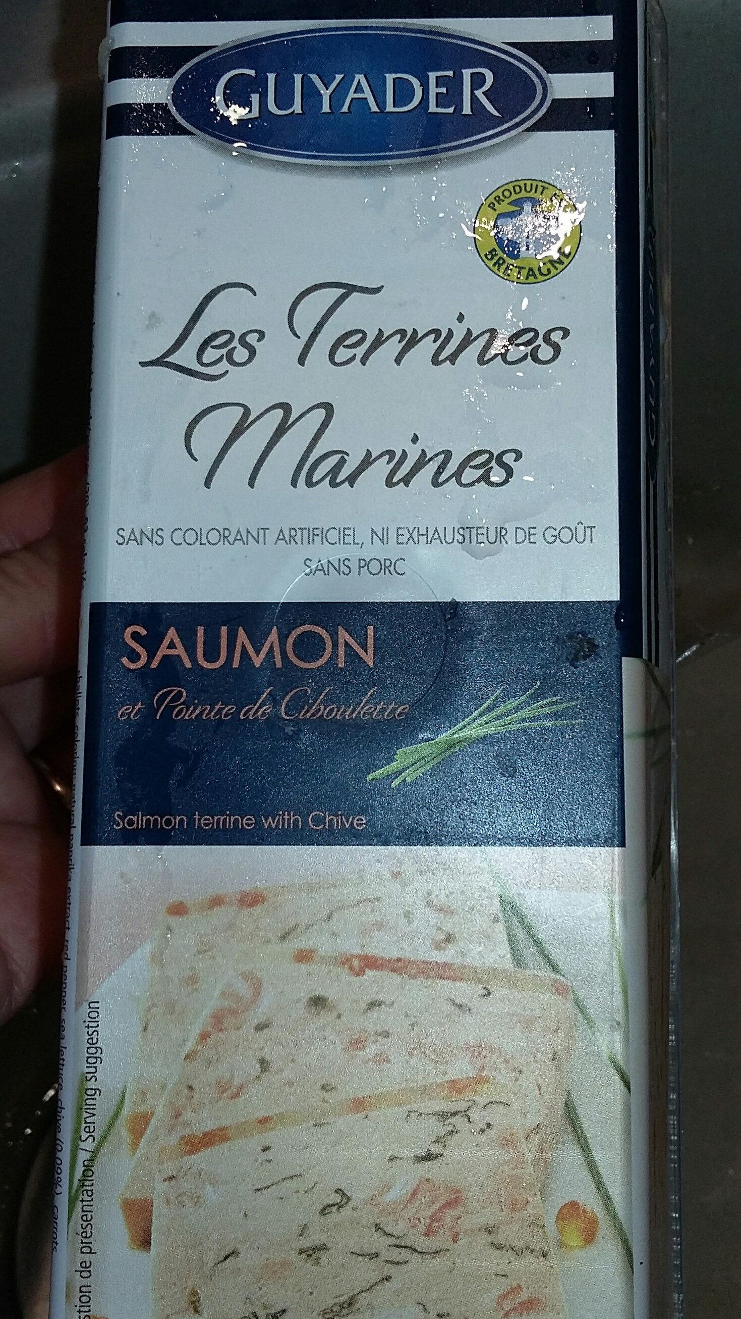 Terrine De Saumon Norvégienne 840G, 1 Pièce - Produit - fr