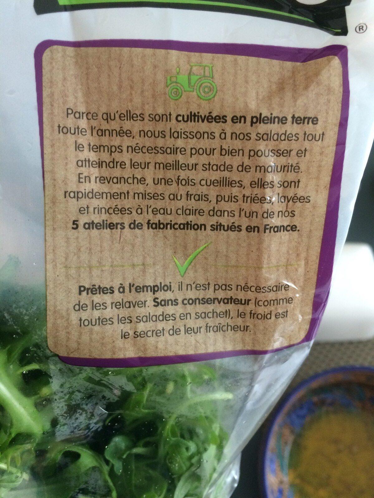 Roquette Bio - Ingrédients - fr