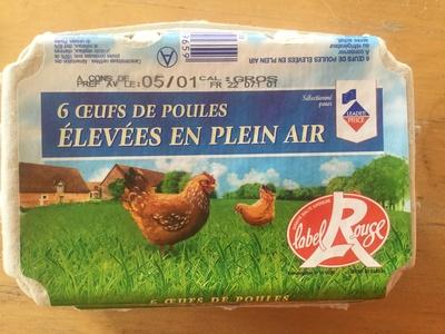 Oeufs de poules élevées en plein air - Produit - fr