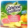 Compote pomme goyave rose des Antilles - Product