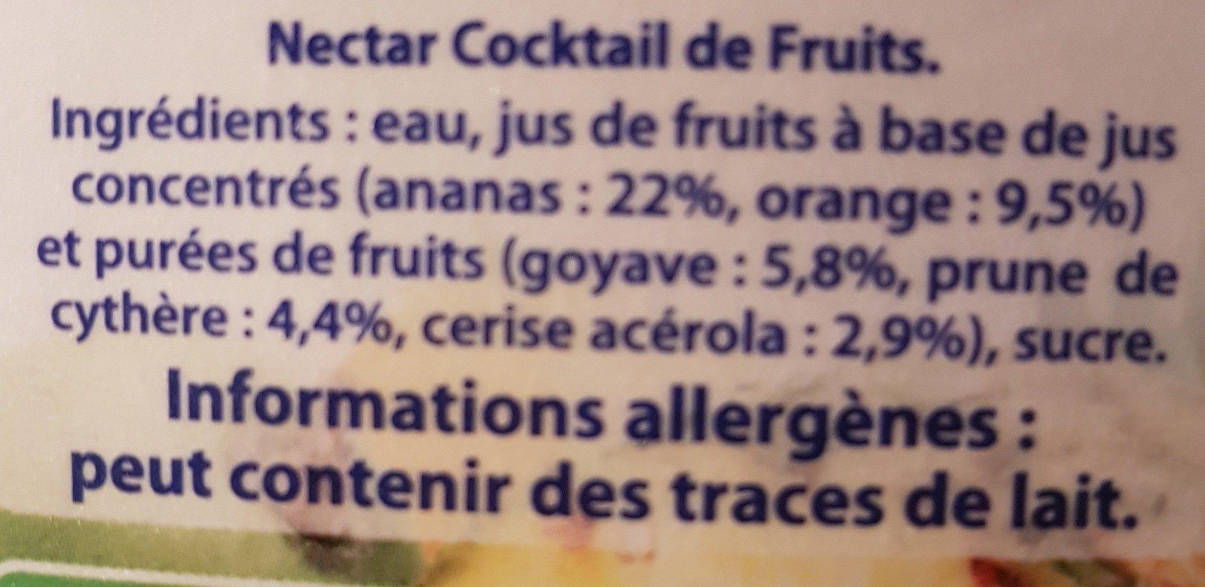 Nectar cocktail de fruits - Ingrediënten