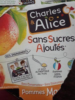 Pommes Mangues Sans Sucres Ajoutés - Produit - fr