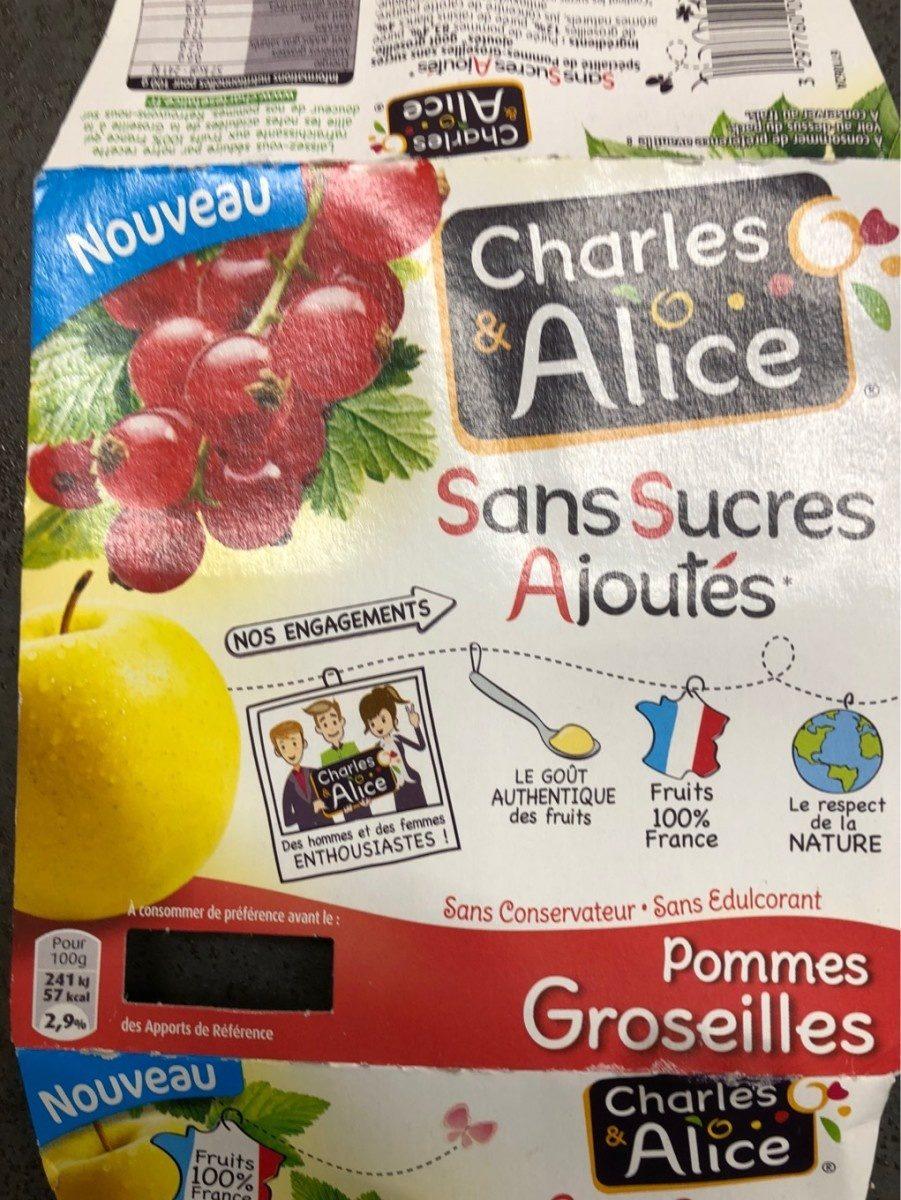 Pomme Groseilles Sans Sucres Ajoutés - Product