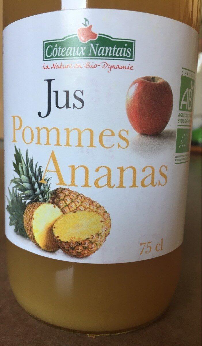 Jus pommes ananas - Produit - fr