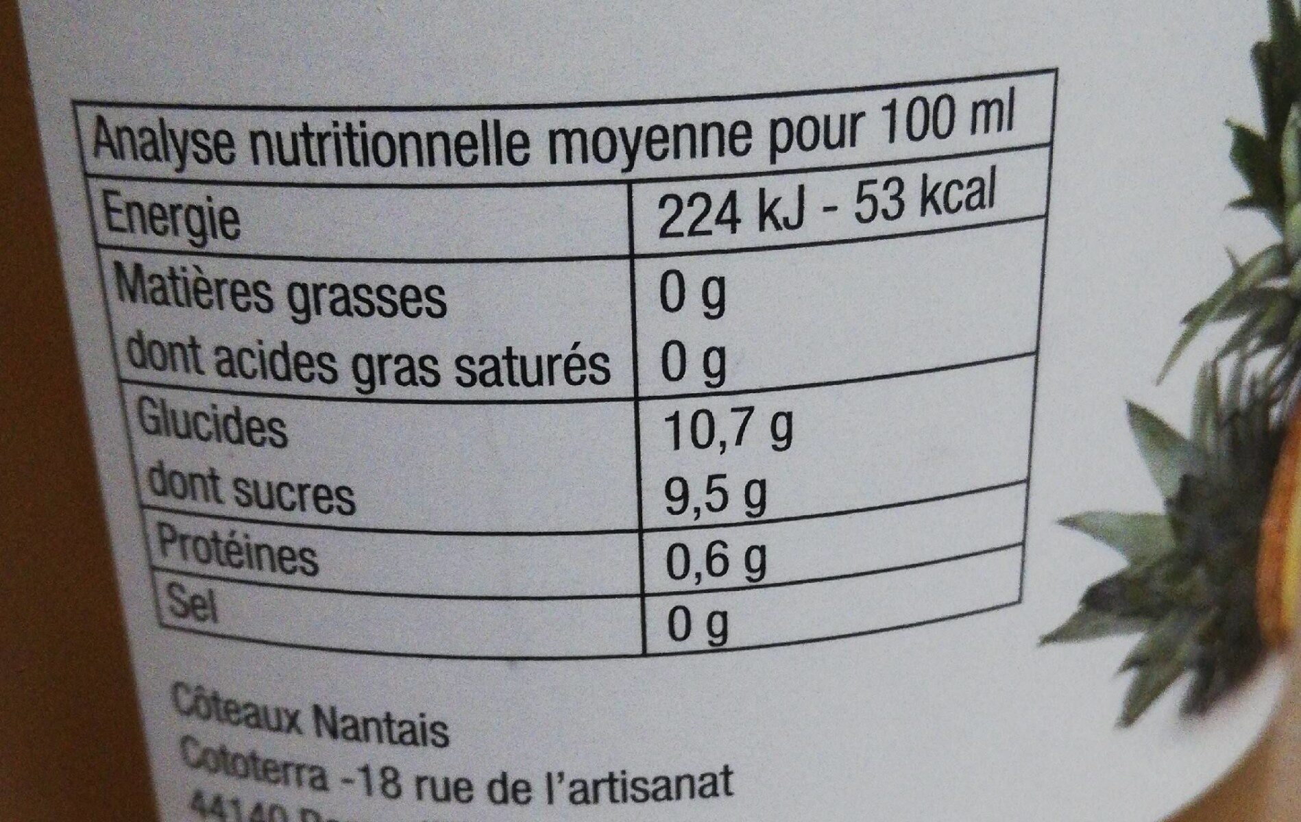 Jus pommes ananas - Informations nutritionnelles - fr