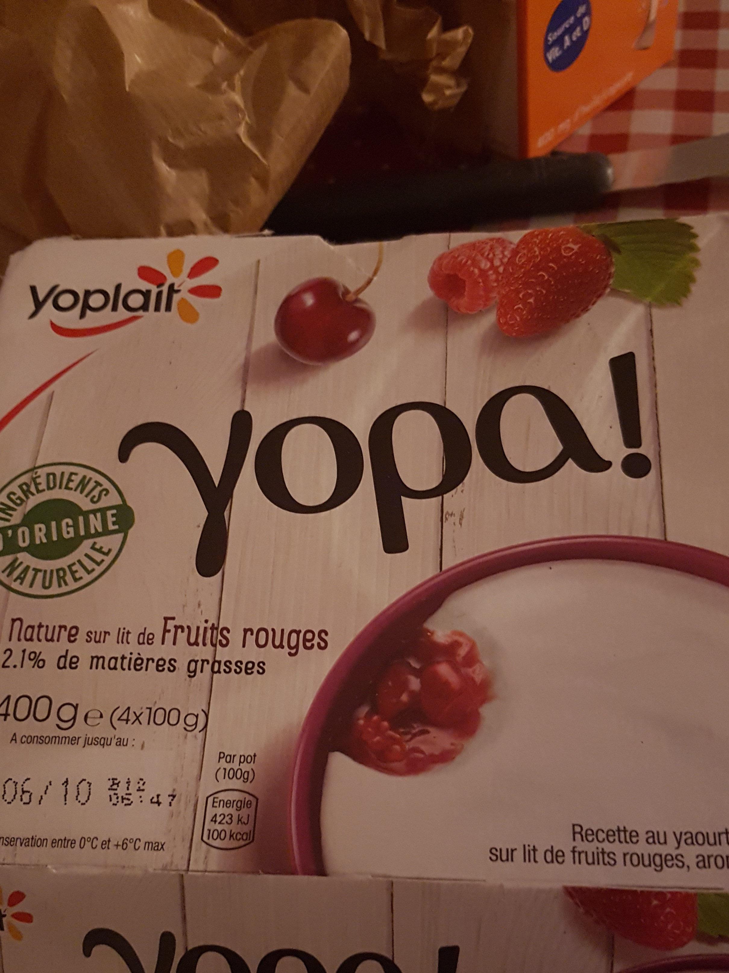 Recette au yaourt nature, sur lit de fruits rouges - Produit - fr