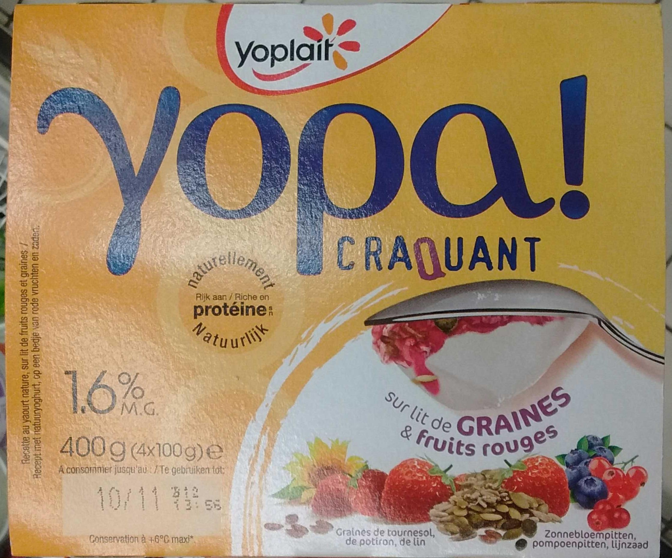Yopa! Craquant sur lit de graines & fruits rouges (1,6% MG) - Product - fr