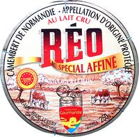 Camembert de Normandie AOP (22% MG) au lait cru - Produit - fr
